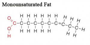 picture of monounsaturated fat molecule